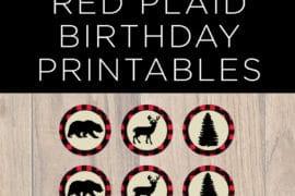 red plaid birthday
