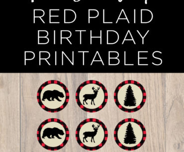 red plaid birthday