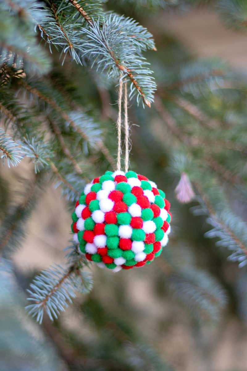 pom pom ball in tree