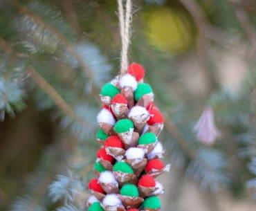 pom pom pinecone in tree
