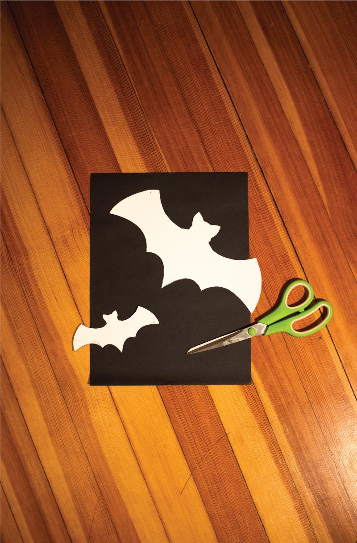 bat and scissor