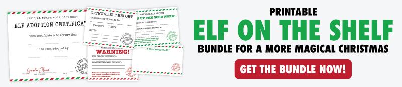 elf on the shelf bundle banner
