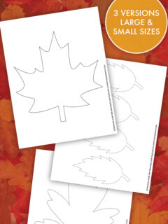 leaf template thumbnail